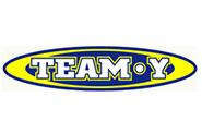TEAM・Yロゴ