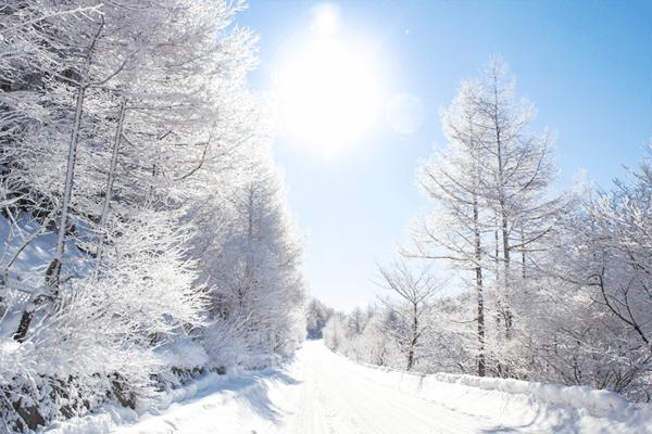 雪道におすすめ自転車画像