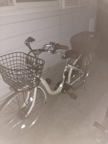 初通販自転車!